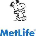 Stocks for the Long Run: Metlife