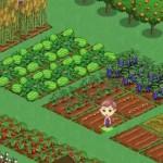 Zynga (Symbol ZNGA) should literally play FarmVille